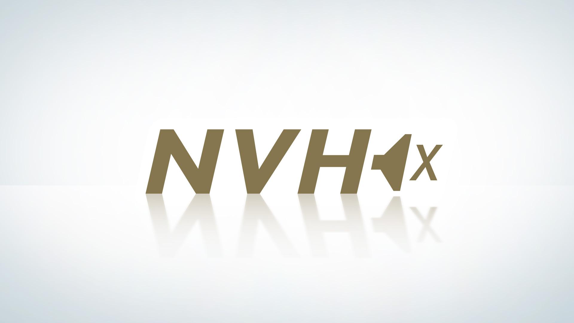 NVH System